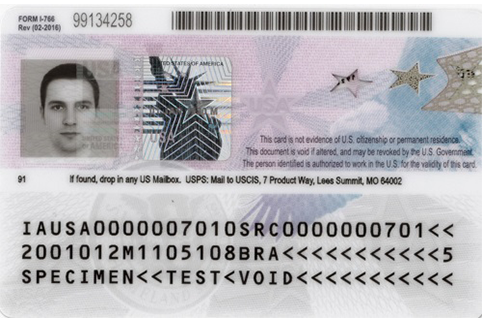 Back view of current Employment Authorization Card